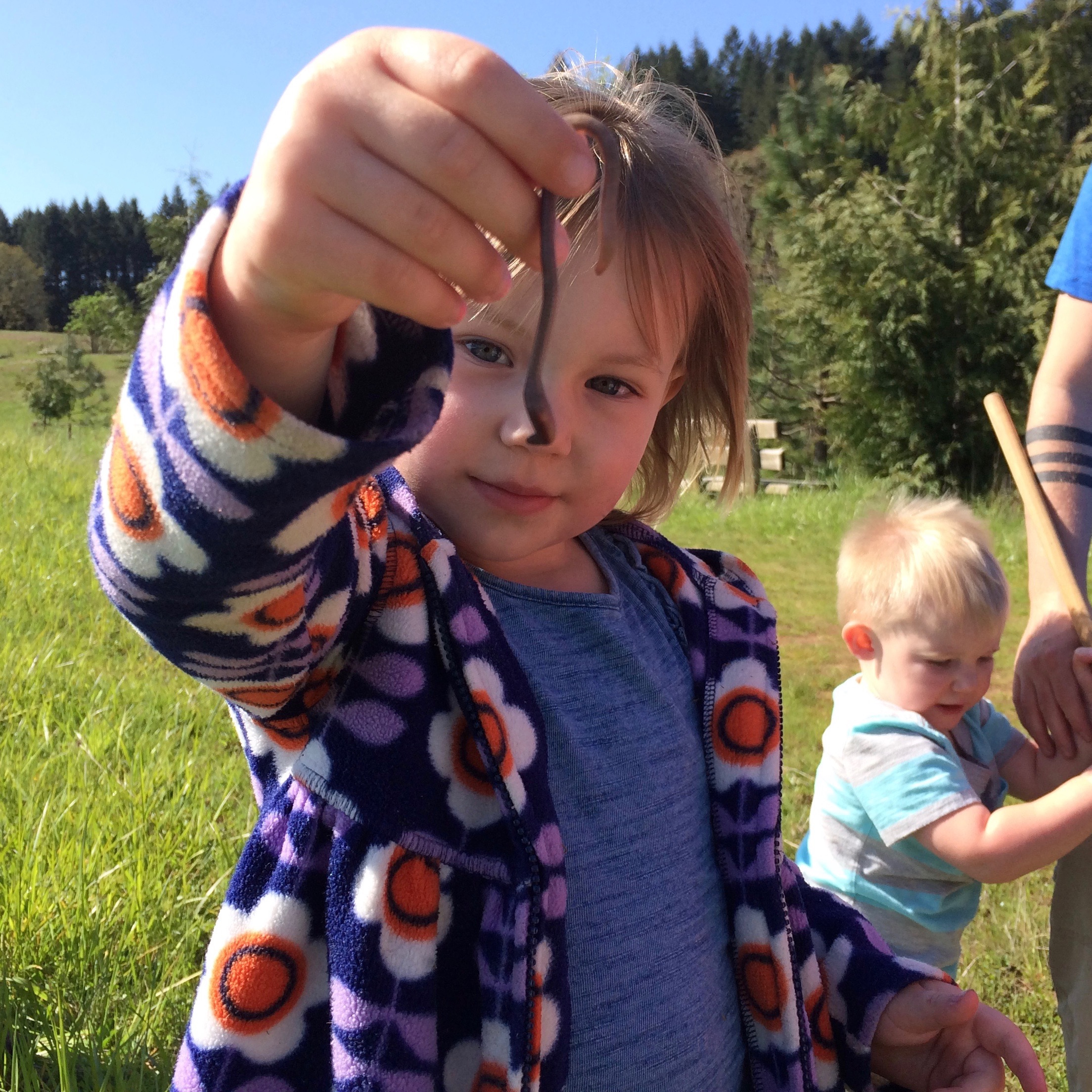 Preschool Nature Programs