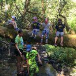 Kids sitting on a log over a creek